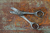 Pair of Tin Cutters