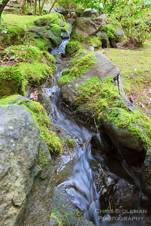 Shallow stream flows through moss covered rocks in portland japanese garden chris bidleman