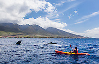 A kayaker has a close encounter with humpback whales off the coast of Maui.
