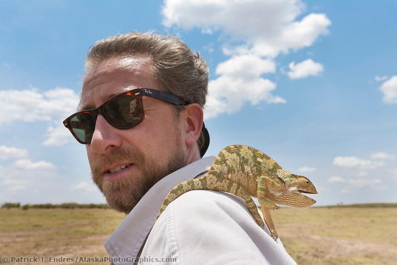 Camelion, Masai Mara, Africa