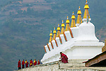 A group of monks near a group of stupas, Paro Valley, Bhutan