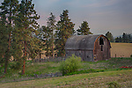 Idaho, North central, Latah county, Viola. An old gothic style barn in the early morning light in spring.