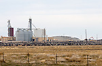 A giant cattle feed lot operation in eastern Colorado.