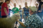 High school students participate in the Adventures in Veterinary Medicine program at the Cummings school in Grafton. (Melody Ko/Tufts University)
