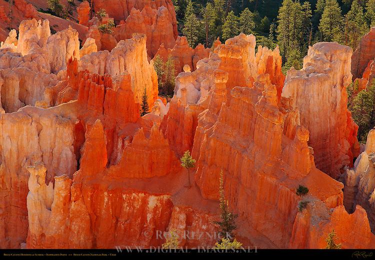 Bryce Canyon Hoodoos from Inspiration Point at Sunrise, Bryce Canyon National Park, Utah
