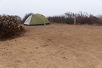 My REI Quarterdome T2 tent set up with rainfly at Crystal Cove State Park's Lower Moro campground.  Space markers numbering each camping spot are scattered around the campground.