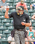 19 March 2015: MLB Umpire Jeff Nelson asks for a new ball during a Spring Training game between the Miami Marlins and the Atlanta Braves at Champion Stadium in the ESPN Wide World of Sports Complex in Kissimmee, Florida. The Braves defeated the Marlins 6-3 in Grapefruit League play. Mandatory Credit: Ed Wolfstein Photo *** RAW (NEF) Image File Available ***