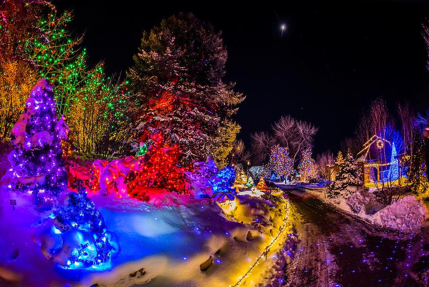 Hudson Gardens Christmas Lights