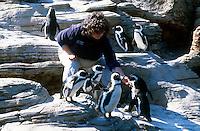 AQUARIUM ANIMALS<br /> Aquarium Trainer Feeding Penguins<br /> Aquarium trainers and keepers use specially made toys, treats and training to enrich the lives of aquarium animals
