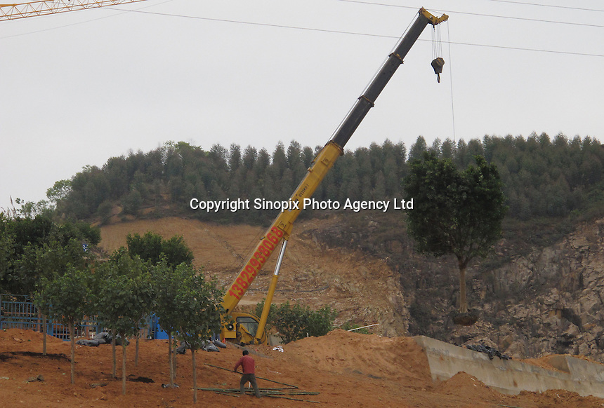 20120116 CHINA GUANGDONG PROVINCE : A tree is lifted by a crane in Hallstatt, China's copy of the Austrian alpine town of the same name, Boluo Township, Huizhou City, Guangdong Province, China, 16 January 2012. Property developments such as this are expected to run into financial difficulites in 2012 as the Chinese economy and property market continue to cool, in reaction to the ongoing sovereign debt crisis in Europe.<br /> SINOPIX / ALEX HOFFORD