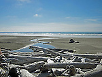 stream winding down through sand to the Pacific Ocean lined with drifwood and stones under a clear blue sky
