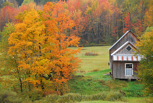Old farmhouse from behind in fall