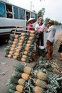 On the Highway number 1 between Danang and Hué, February 1988. Vegetable stands found on Highway.