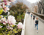 1604-16 281<br /> <br /> 1604-16 GCS Spring Flowers and Blossoms<br /> <br /> BYU Campus Spring<br /> <br /> April 8, 2016<br /> <br /> Photo by Jaren Wilkey/BYU<br /> <br /> &copy; BYU PHOTO 2016<br /> All Rights Reserved<br /> photo@byu.edu  (801)422-7322
