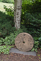 Shaded garden with gristmill stone ornament, birch tree, vinca major groundcover, holly and shrub
