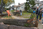 October 30, 2012  (Washington, DC)  A tree cutting crew removes a fallen tree as D.C. Mayor Vincent Gray (r) surveys Hurricane Sandy recovery efforts.   (Photo by Don Baxter/Media Images International)