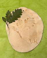 Kinder basteln Blattkacheln aus Salzteig, Salzteig mit Abdruck vom Eichenblatt nach dem Brennen