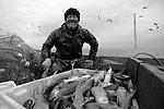 Comunidade do Porto no município de  Santa Vitória do Palmar  no Rio Grande do Sul. Comunidade de Pescadores . Colônia Z16.