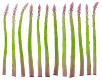 An X-ray of asparagus (Asparagus officinalis). Source of folic acid, potassium, beta-carotene, C,A, and E vitamins.