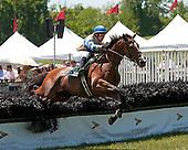 Radnor Hunt Races - 5/19/12