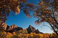 Zion National Park in Southwestern Utah.