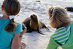 South America, Ecuador, Galapagos Islands. Family fun watching sea lions on Mosquera Island in the Galapagos.