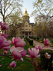 Dome with spring flowers<br />