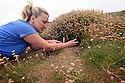 THE ISLES OF SCILLY SEABIRD RECOVERY PROJECT. JACLYN  PEARSON, RSPB, MAKING A MANX SHEARWATER COUNT BY PLAYING A RECORDING OF THEIR CALL INTO THEIR BURROWS.  17/06/2015. PHOTOGRAPHER CLARE KENDALL.