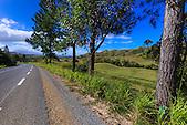 Sur le bord de la RT1, région de Bourail, côte ouest de la Nouvelle-Calédonie