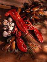 Lobster, Clams and Mussels on Seawee