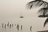 Belize, Central America - A yacht heads out of the harbor with palm fronds in front of morning light on the sea outside Placencia