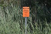 reserve ecologique des tourbieres  de Lanauraie