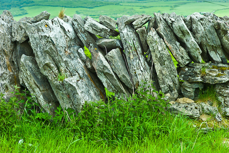 Traditional dry stone wall, vertical sloping stones, in field in The Burren, County Clare, West of Ireland