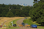 Richmond Upon Thames, Surrey, England 2007. Deer crossing road in Richmond Park. London skyline, weekend traffic.
