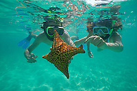 Two snorkellers holding a four legs starfish, Saona Island, Dominican Republic