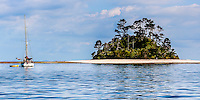 Beehive Island, Kawau.  A cute dome shaped, tropical looking, island with surrounding white sand. Man diving off yacht while anchored close to Beehive Island.