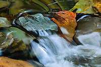 Water running over colorful creek bed rocks at Pinkham Creek Kootenai National Forest Montana