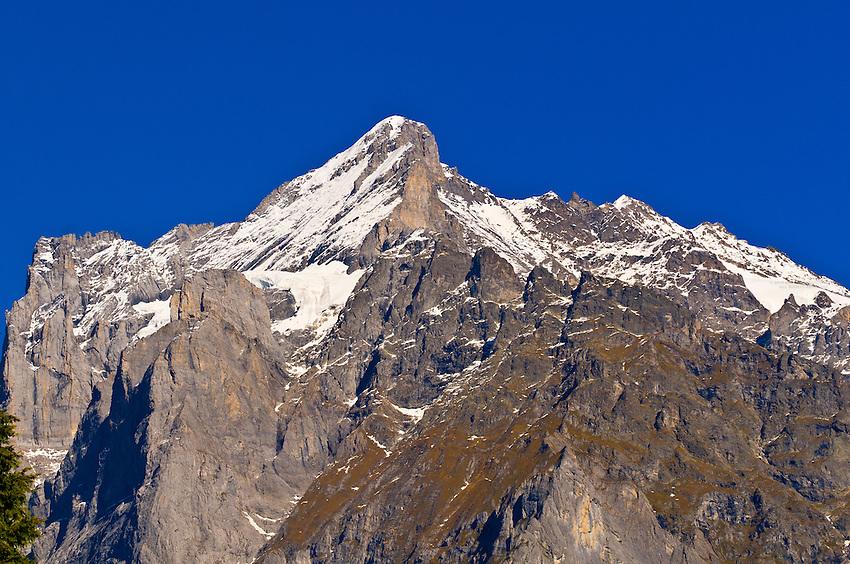 Wetterhorn from Grindelwald, Canton Bern, Switzerland