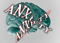 "Biomedical illustration of the human brain, lateral view, with the word ""Anxiety"" superimposed"