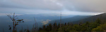 Appalachian Trail; Clingman's Dome; Dead Trees, Great Smoky Mountains NP, TN