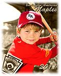 2011 Burlington American Maples