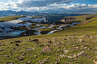 High alpine environment in the Beartooth Mountains