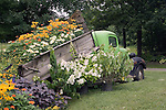 Old Chevrolet Truck with Flowers in the back