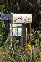 The Tourist Trap<br /> St. John<br /> US Virgin Islands