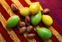 Fresh Argan Fruits and Argan nuts (Argania spinosa L)