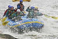 Tourists enjoy paddle rafting down the Nenana river, Denali Park, Alaska