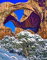 Snow at Double Arch, Arches National Park, Utah, Windows Section, Entrada  Sandstone ,Utah Juniper