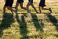 runners in field competing in a cross country race backlit for the morning sun