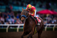 ARCADIA, CA - FEBRUARY 04: Hoppertunity #1, ridden by Flavien Prat wins the San Antonio Stakes at Santa Anita Park on February 4, 2017 in Arcadia, California. (Photo by Alex Evers/Eclipse Sportswire/Getty Images)