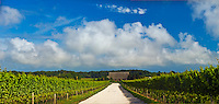 Channing Daughters Winery, dirt road, Barn, lNew York, Bridgehampton, Long Island, South Fork